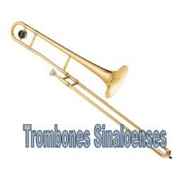 Trombon Sinaloense