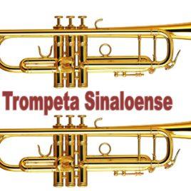 Sample de Trumpeta sinaloense para teclados korg TR, Studio, LE, Extreme