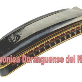 ARMONICA DURANGUENSE N364