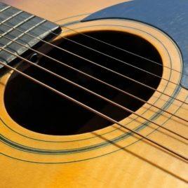 Guitarra M1